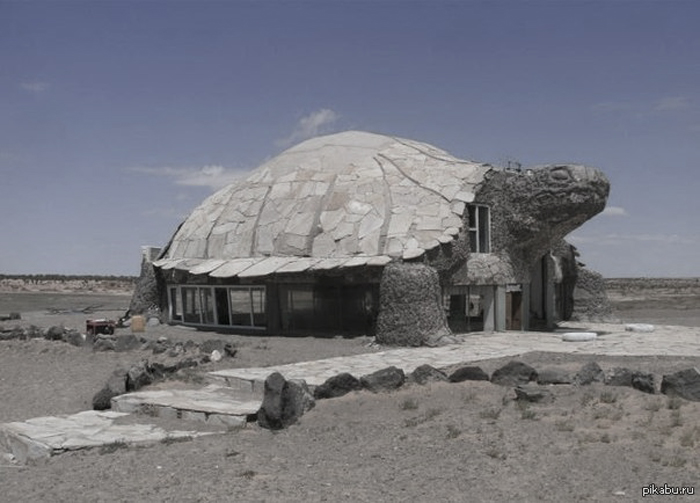 Turtle-house-in-unknown-desert